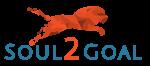 Soul2Goal